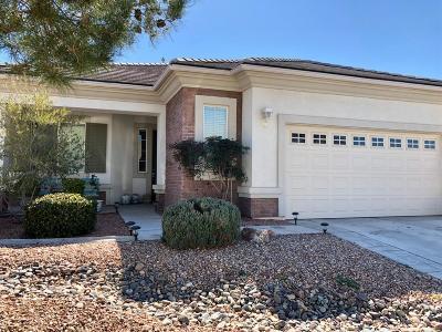 Apple Valley Single Family Home For Sale: 19333 Macklin Street