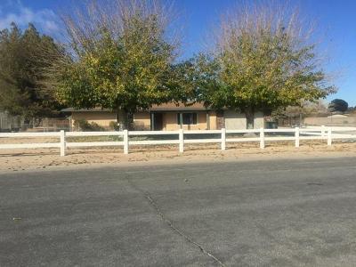Apple Valley Single Family Home For Sale: 14280 Havasu Road