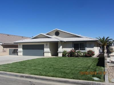 Victorville Single Family Home For Sale: 13455 Anchor Drive