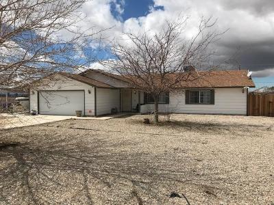 Apple Valley Single Family Home For Sale: 20900 Rambling Road
