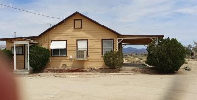 Lucerne Valley Single Family Home For Sale: 12535 E Lincoln Avenue