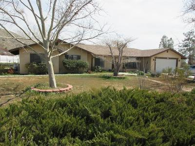 Apple Valley Single Family Home For Sale: 19387 Carlisle Road