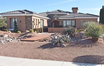 Apple Valley Single Family Home For Sale: 19207 Monterey Street