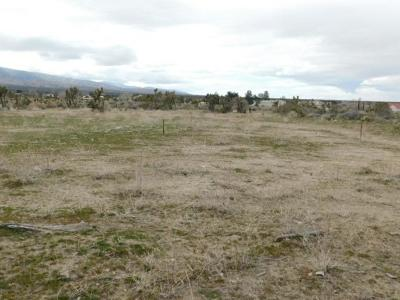 Pinon Hills Residential Lots & Land For Sale: 11664 Oasis Road