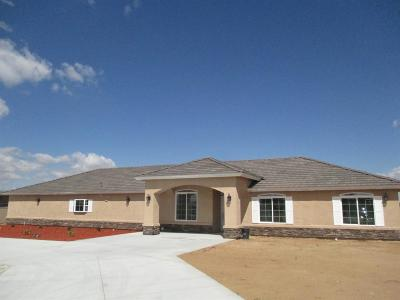 Apple Valley Single Family Home For Sale: 10717 Kiowa Road