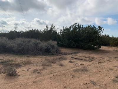 Hesperia CA Residential Lots & Land For Sale: $12,000