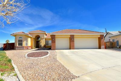 Victorville Single Family Home For Sale: 14462 Via Puente