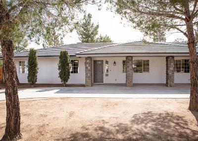 Hesperia Single Family Home For Sale: 17041 Fairburn Street