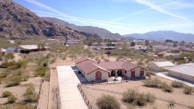 Apple Valley Single Family Home For Sale: 17197 Century Plant Road