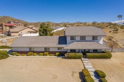 Apple Valley Single Family Home For Sale: 16541 Muni Road