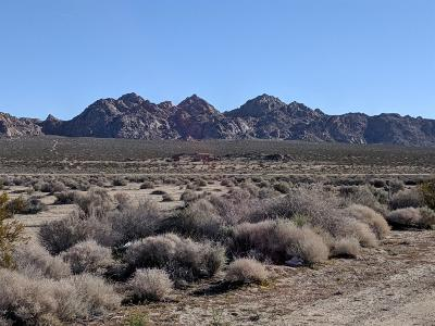 Lucerne Valley Residential Lots & Land For Sale: Rabbit Springs (Near) Road