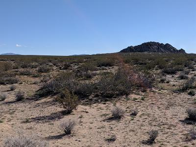 Lucerne Valley Residential Lots & Land For Sale: Harrod (Near) Road