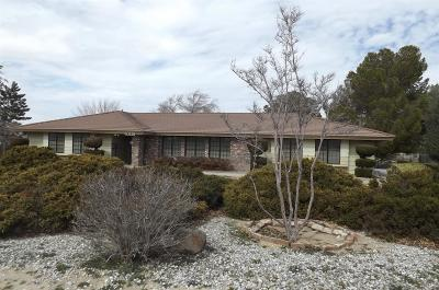 Apple Valley Single Family Home For Sale: 19240 Tomahawk Road