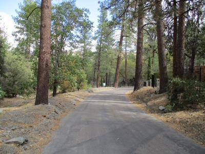 Wrightwood Residential Lots & Land For Sale: 5870 Acron Drive