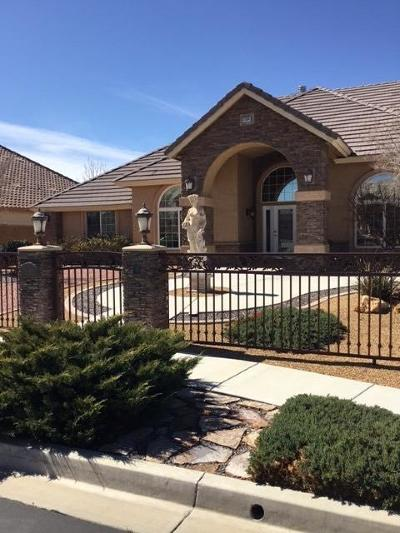Apple Valley Single Family Home For Sale: 11164 Lindsay Lane