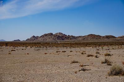 Lucerne Valley Residential Lots & Land For Sale: Pot Belly Place