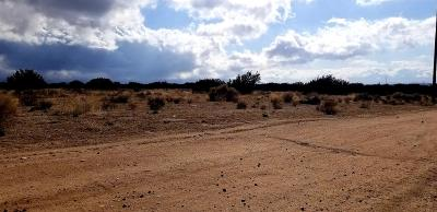 Hesperia CA Residential Lots & Land For Sale: $249,900