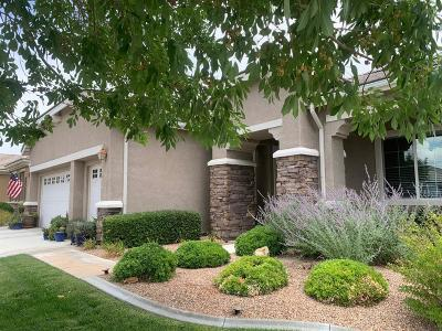 Apple Valley Single Family Home For Sale: 10725 Bridge Haven Road