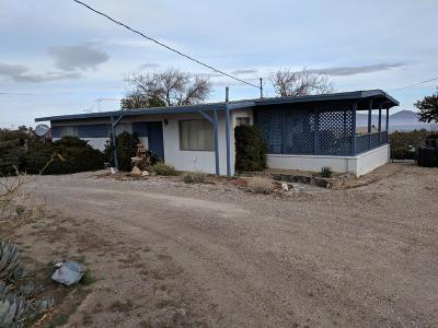 Lucerne Valley Single Family Home For Sale: 32772 Sapphire Road