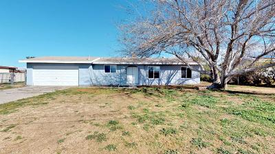 Hesperia Single Family Home For Sale: 11555 Calcite Avenue