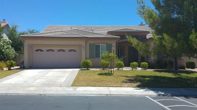 Apple Valley Single Family Home For Sale: 11075 Dandelion Lane