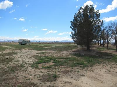 Barstow Single Family Home For Sale: 37116 Dixie Road