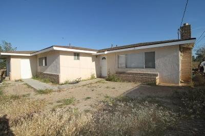 Hesperia Single Family Home For Sale: 18171 Catalpa Street