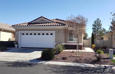 Apple Valley Single Family Home For Sale: 11061 Waterwood Street