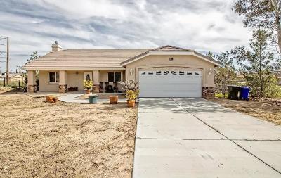 Victorville Single Family Home For Sale: 12609 Senecio Avenue