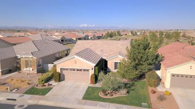 Apple Valley Single Family Home For Sale: 10204 Wilmington Lane