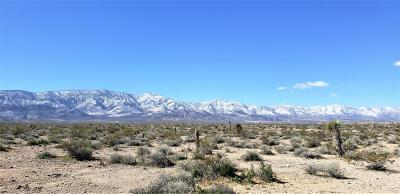 Lucerne Valley Residential Lots & Land For Sale: Dallas Avenue