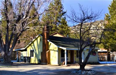 Wrightwood Single Family Home For Sale: 938 Apple Avenue