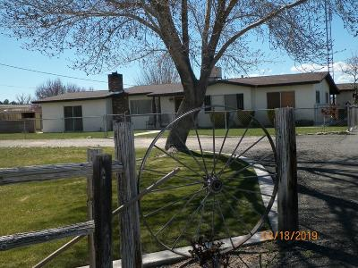 Apple Valley Single Family Home For Sale: 8758 Deep Creek Road