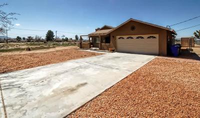 Apple Valley Single Family Home For Sale: 14942 Nanticoke Road