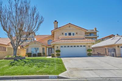 Victorville Single Family Home For Sale: 13570 Sierra Vista Drive