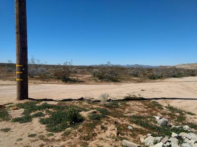 Apple Valley CA Residential Lots & Land For Sale: $45,000