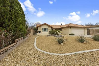 Victorville Single Family Home For Sale: 17845 Crestview Drive