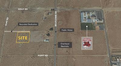 Adelanto CA Residential Lots & Land For Sale: $35,000