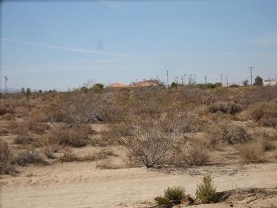El Mirage Residential Lots & Land For Sale: Caughlin Road