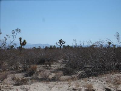 Victorville CA Residential Lots & Land For Sale: $399,000