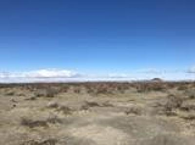 Adelanto CA Residential Lots & Land For Sale: $29,500