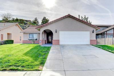 Victorville Single Family Home For Sale: 13390 Spring Valley Parkway
