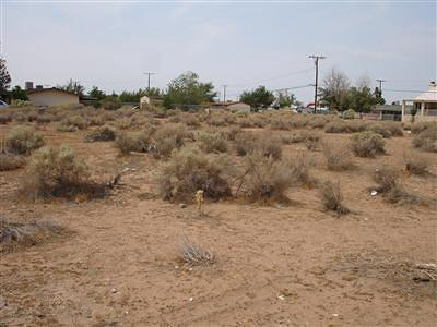 San Bernardino County Residential Lots & Land For Sale: Quantico Road