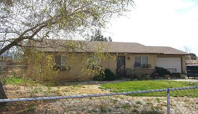 Apple Valley Single Family Home For Sale: 16687 Pauhaska Road