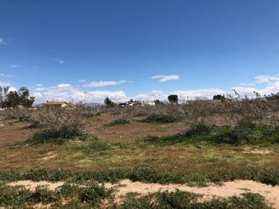 Hesperia CA Residential Lots & Land For Sale: $99,000