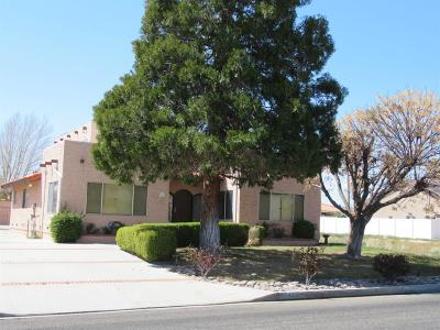 Victorville Single Family Home For Sale: 14000 Spring Valley Parkway