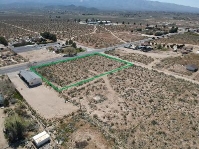 Lucerne Valley Residential Lots & Land For Sale: 247/Old Woman Springs Road