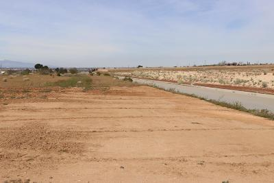 Apple Valley CA Residential Lots & Land For Sale: $160,000