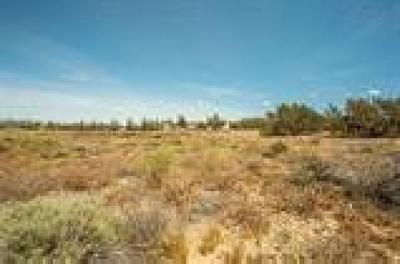 Oak Hills Residential Lots & Land For Sale: 7325 Mesa Vista Avenue