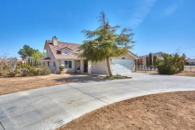 Apple Valley Single Family Home For Sale: 13927 Ivanpah Road